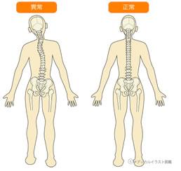 身体のイメージ