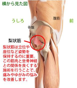 豊川たいよう腰痛整体院での坐骨神経痛の施術方法について